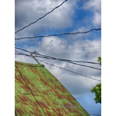 Green Roof with Wires